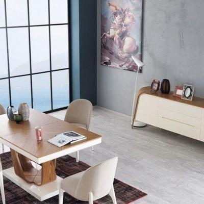 dining furniture2